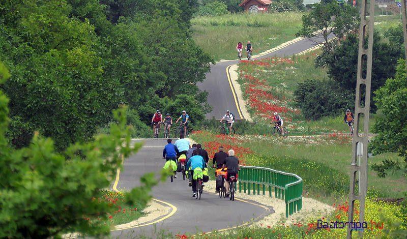 Bicikliut-balatongyoroknel-balatontipp-gyorffía