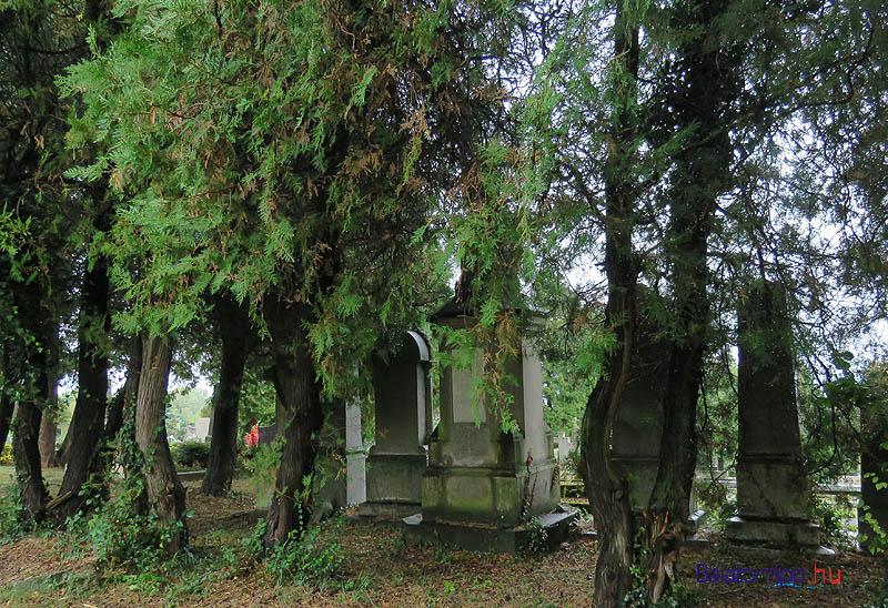 A Hertelendy-síremlék északi oldalának fák takarják