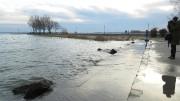 Az alsóörsi móló környéke nem tartozik a kritikus helyek közé, de itt is jól látható a februári időszakhoz képest szokatlanul magas vízállás