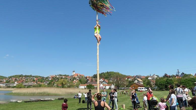 Májusfa mászás a fa koronájára kötött üvegért - és a győzelemért