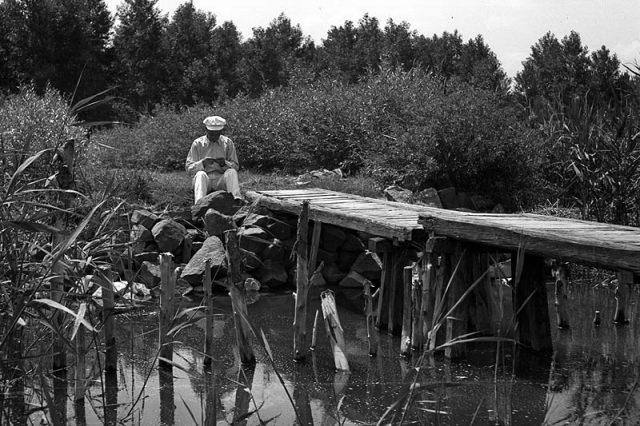 Balatonmáriafürdői strandbejáró 1942-ben - fotó Lissák Tivadar - Fortepan.hu