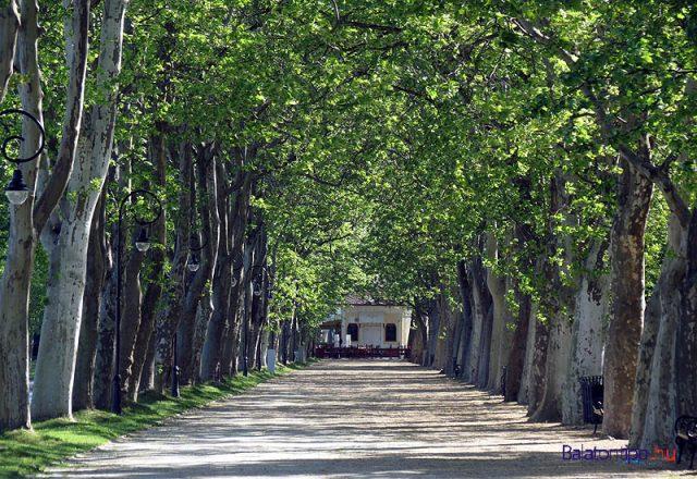 A Kvassay sétány - az emlékfutás helyszíne