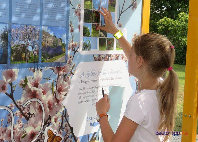 A Balaton növény- és állatvilágát bemutató interaktív fal