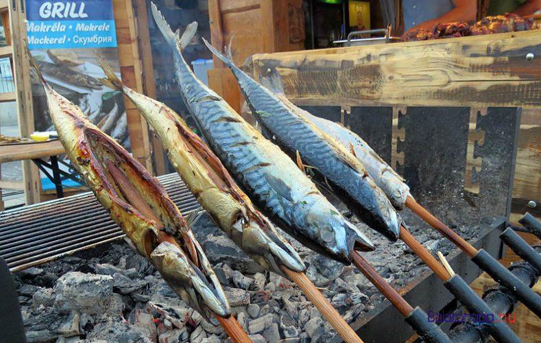 Makrela-grill-Keszthely-Feszt-balatontipp-gyorffya