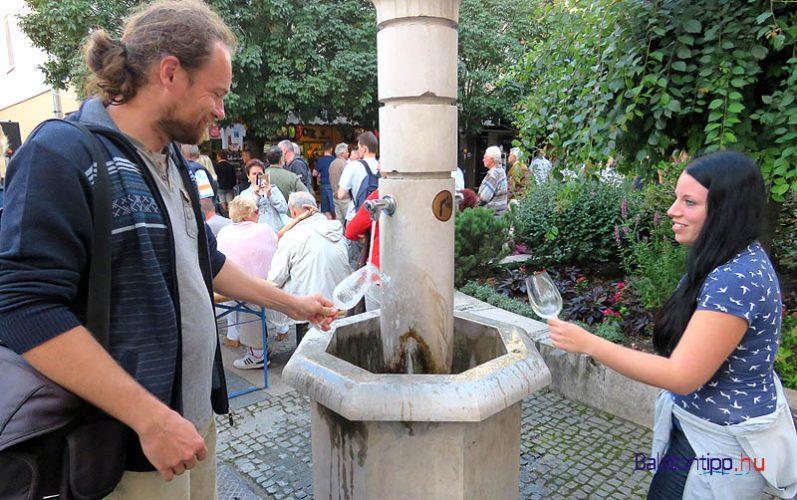 A szervezők külön pohármosó szolgálatot is működtettek, de az utcai kutak is nagyon hasznosnak bizonyultak két különböző karakterű bor között