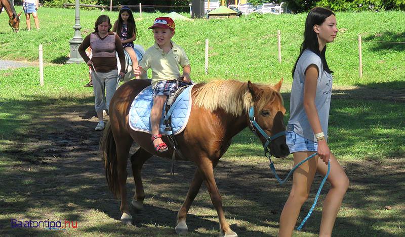 Voltak kisebb lovak is, amikre - külön díjért - fel is lehetett ülni