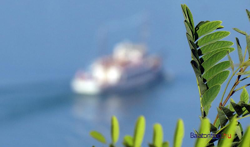 Hajó a homályban
