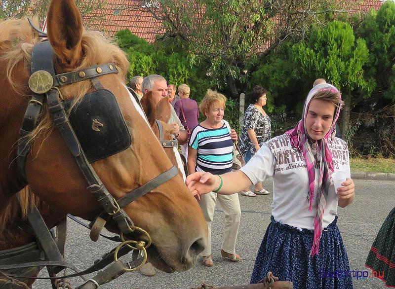 Lanyos-fiu-loval-paloznaki-szuret-falunapok-balatontipp-gyorffya