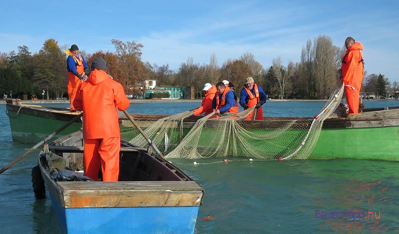 Látványhalászat a 2015-ös Tihanyi Gardafesztiválon - külön engedély kellett hozzá