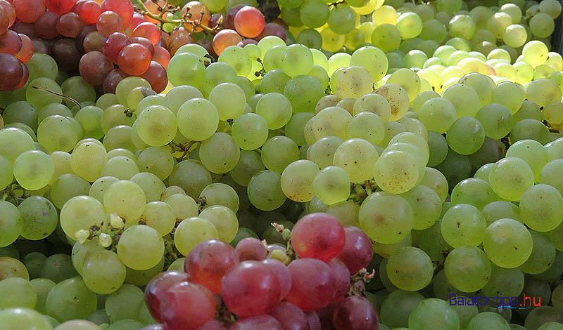 A bor mellett itt már finom szőlővel is kínáltak mindenkit