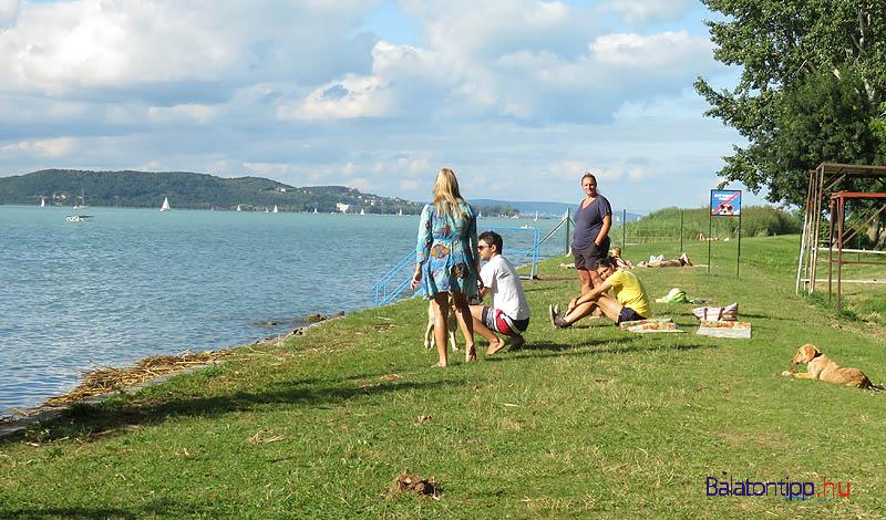 """Egy augusztus végi csendes nap a """"kutyabarát strandon"""""""