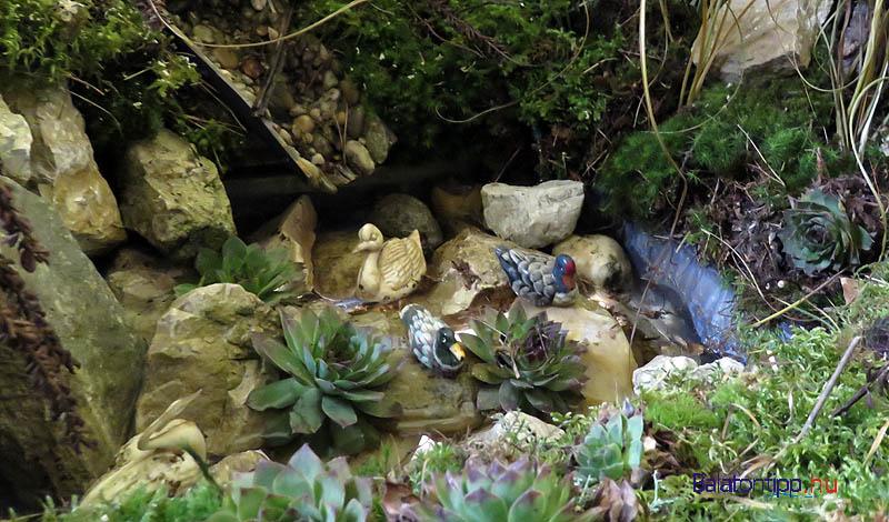 Tó vízimadarakkal az istálló előtt egy kis mélyedésben