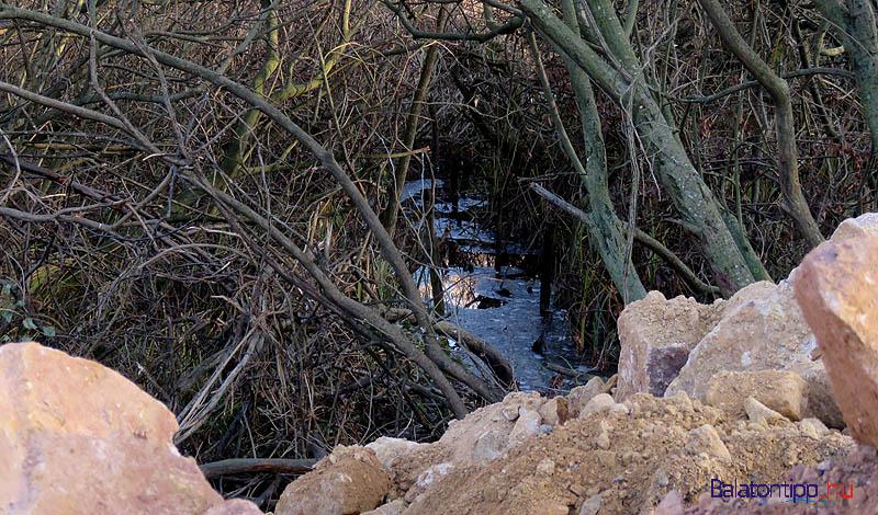 Víz csillog a bozótosban, közvetlenül a lerakó mellett