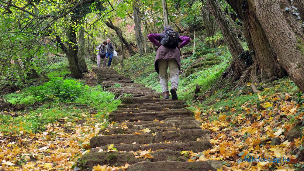 Kopasz-hegy lépcső