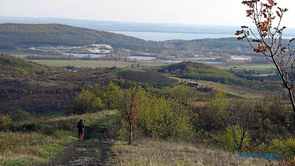Kopasz-hegy déli oldal