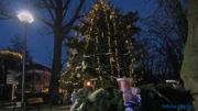 Hévíz karácsonyfa