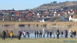 Tihanyi Belső-tó