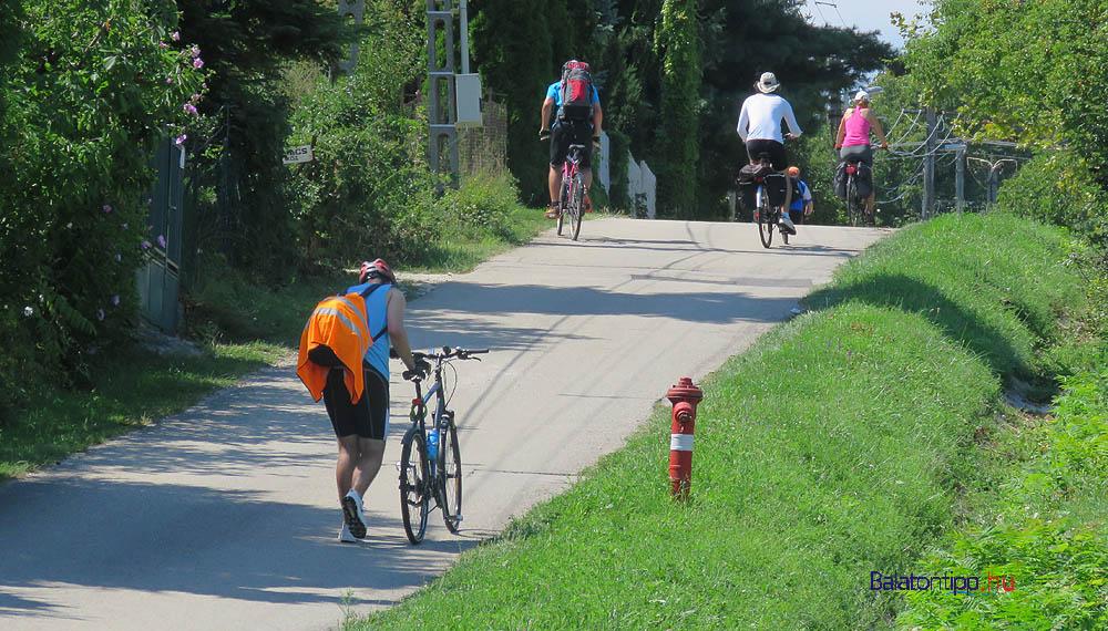 Biciklisek felfelé a Virius utcán